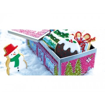 Iced christmas medium biscuit tin